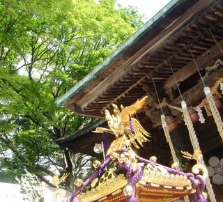 30110724天満宮祭典 神輿と青葉blog.jpg
